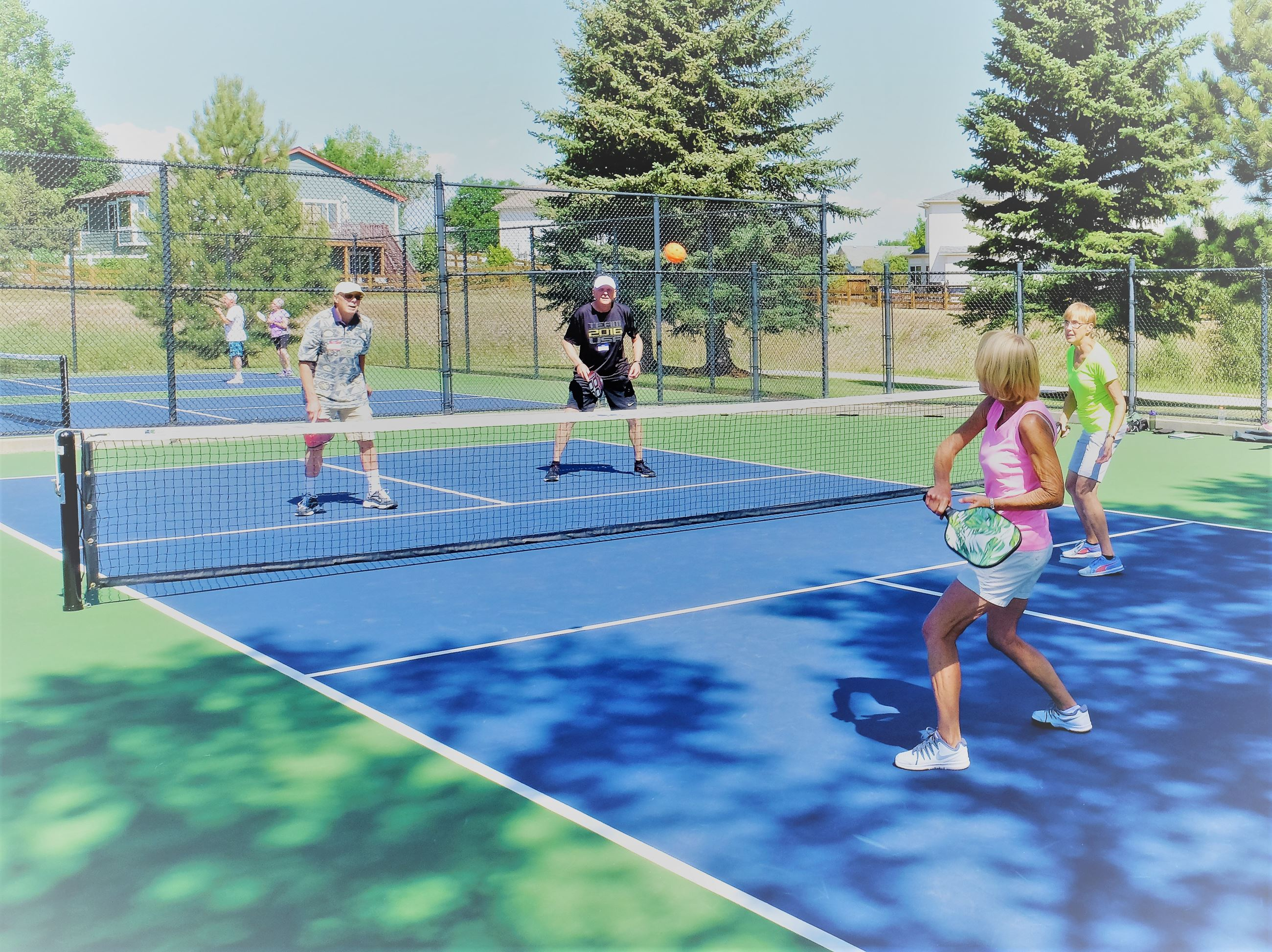 Founders Pickleball 2017