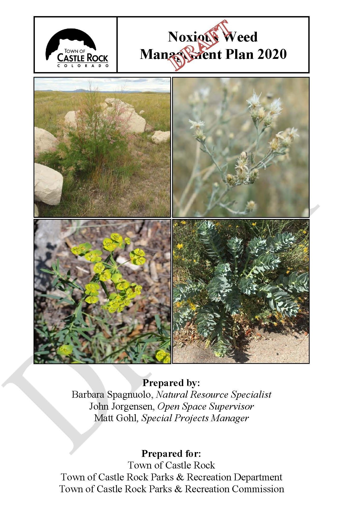 Noxious Weed Management Plan draft front cover