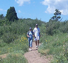 Hikers at Ridgeline